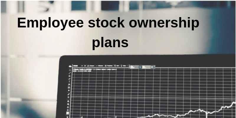 employee stock ownership