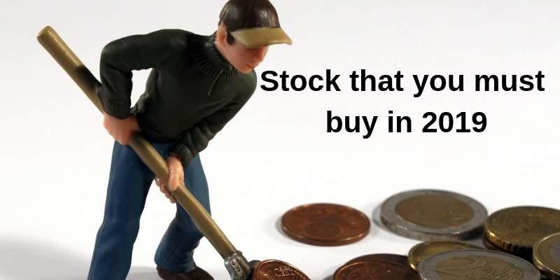 stock must buy in 2019